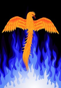 http://www.dreamstime.com/royalty-free-stock-images-phoenix-bird-image21991599